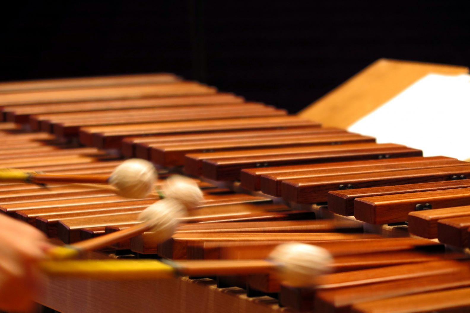 Evelyn Glennie Playing Marimba (7) at BBC Proms Chamber Music 4, Monday 10 November 2015, Cadogan Hall