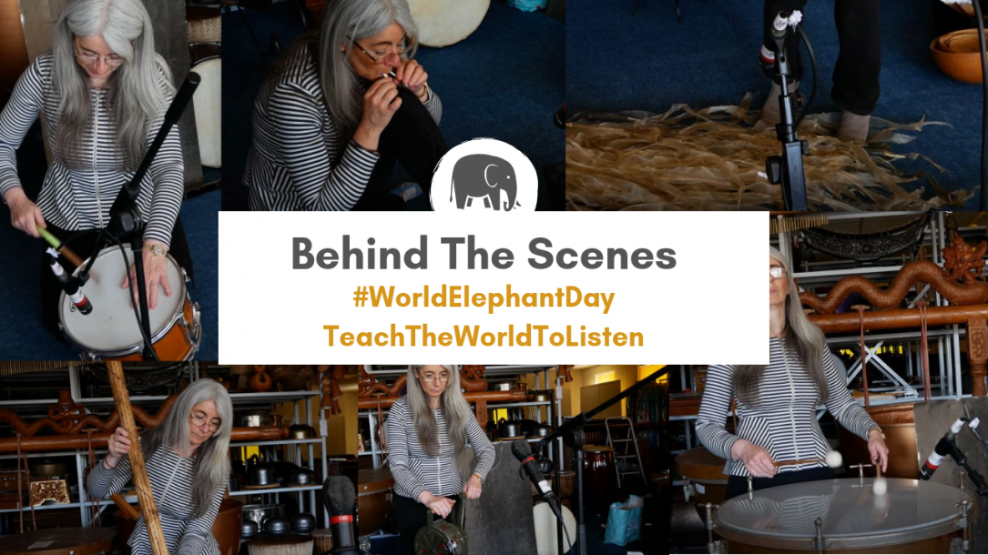 World Elephant Day | Behind The Scenes