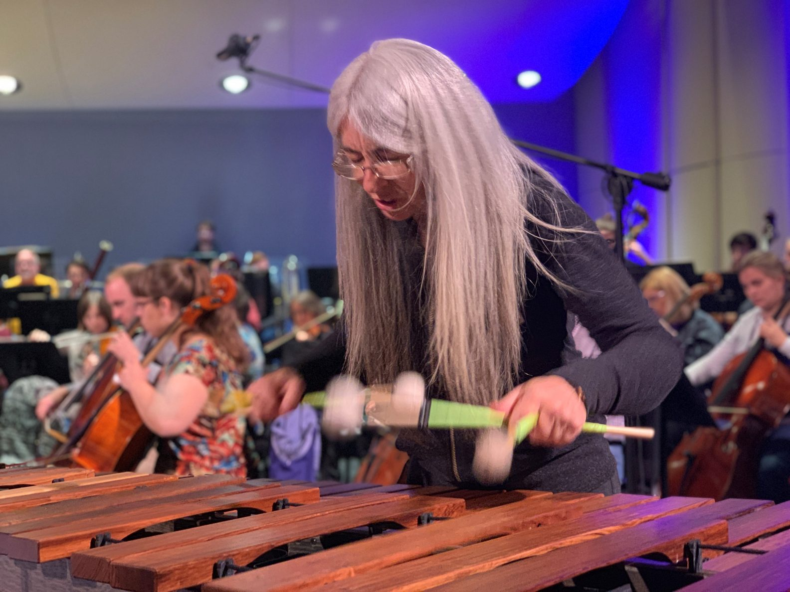 Evelyn Glennie playing the marimba with two mallets